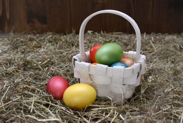 Steadfast family building strong and connected families cheap easter baskets negle Image collections
